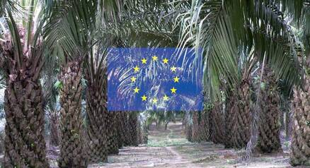 Deforestation free palm oil EU