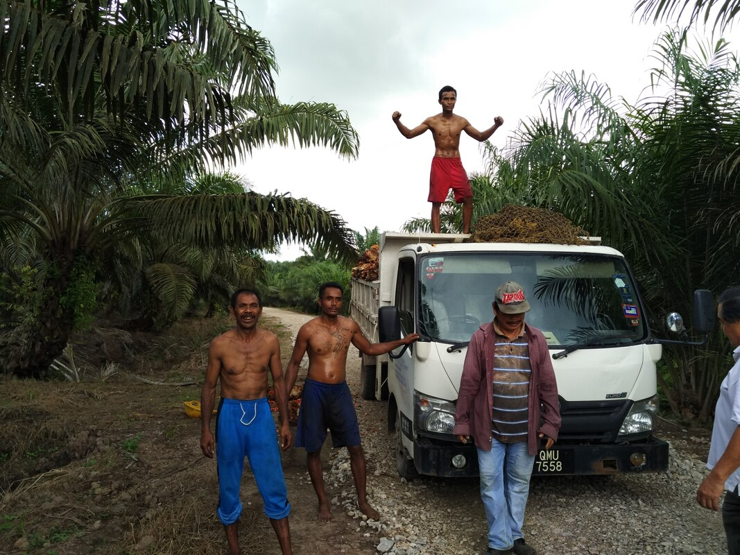 Palm oil farmers Borneo