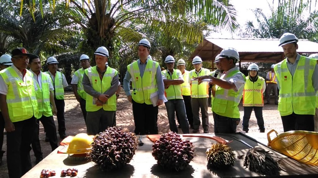 Sustainable Malaysian palm oil EU