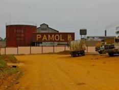 Palm oil Cameroon