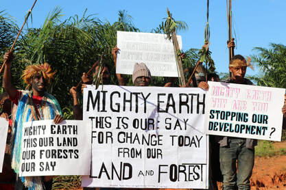 Indigenous peoples of Papua criticize Mighty Earth